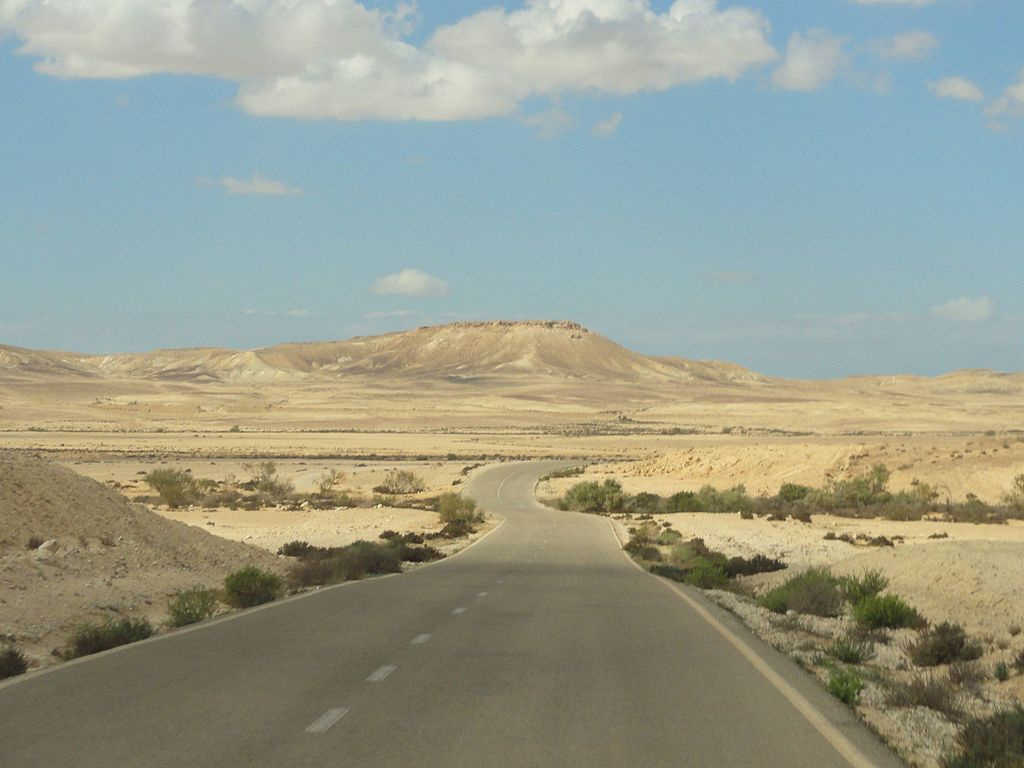 Desert_road_-_panoramio_(3)